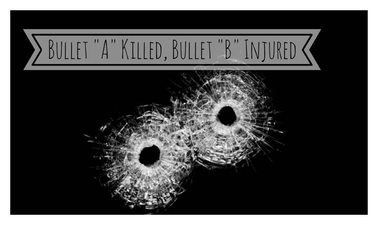 2nd degree murder definition paradox definition | two bullet holes