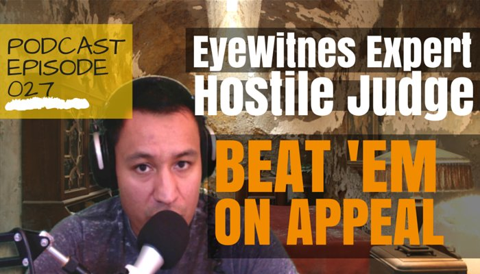 Eyewitness Identification Expert Witness Admissibility, Do What This Guy Did