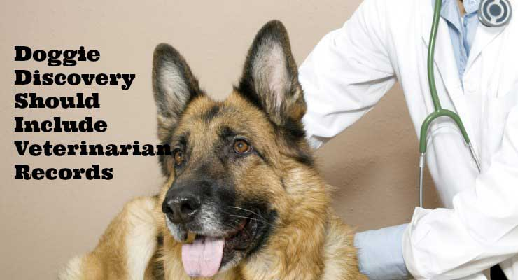 police dog discovery dog veternarian records