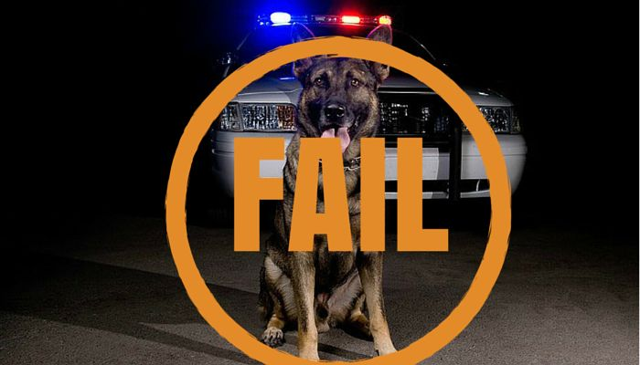 challenging drug dog reliability in court