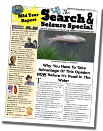 2019 Mid Year Search & Seizure Special Report